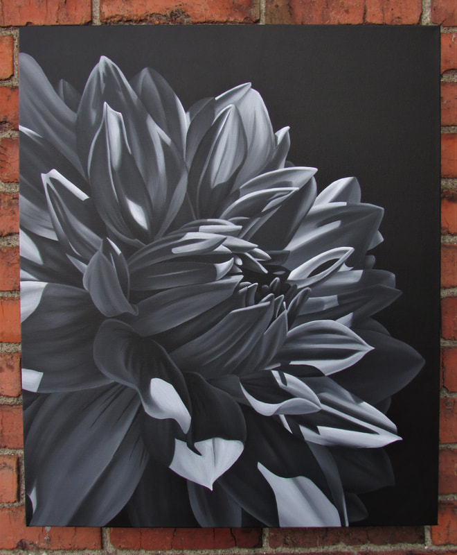 Shadow Study black and white original dahlia painting by Lauren Urlacher